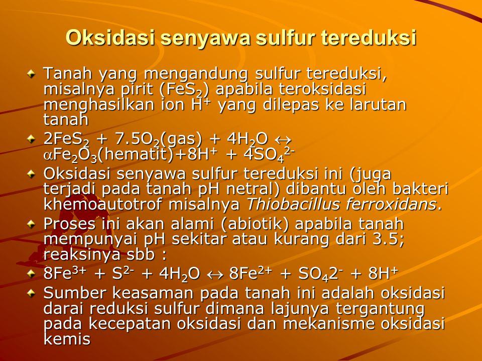 Oksidasi senyawa sulfur tereduksi Tanah yang mengandung sulfur tereduksi, misalnya pirit (FeS 2 ) apabila teroksidasi menghasilkan ion H + yang dilepa