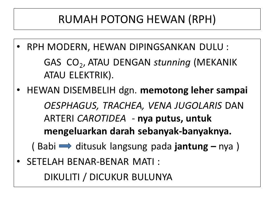 RUMAH POTONG HEWAN (RPH) RPH MODERN, HEWAN DIPINGSANKAN DULU : GAS CO 2, ATAU DENGAN stunning (MEKANIK ATAU ELEKTRIK).