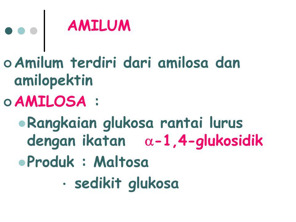 Amilum terdiri dari amilosa dan amilopektin AMILOSA : Rangkaian glukosa rantai lurus dengan ikatan  -1,4-glukosidik Produk : Maltosa sedikit glukosa