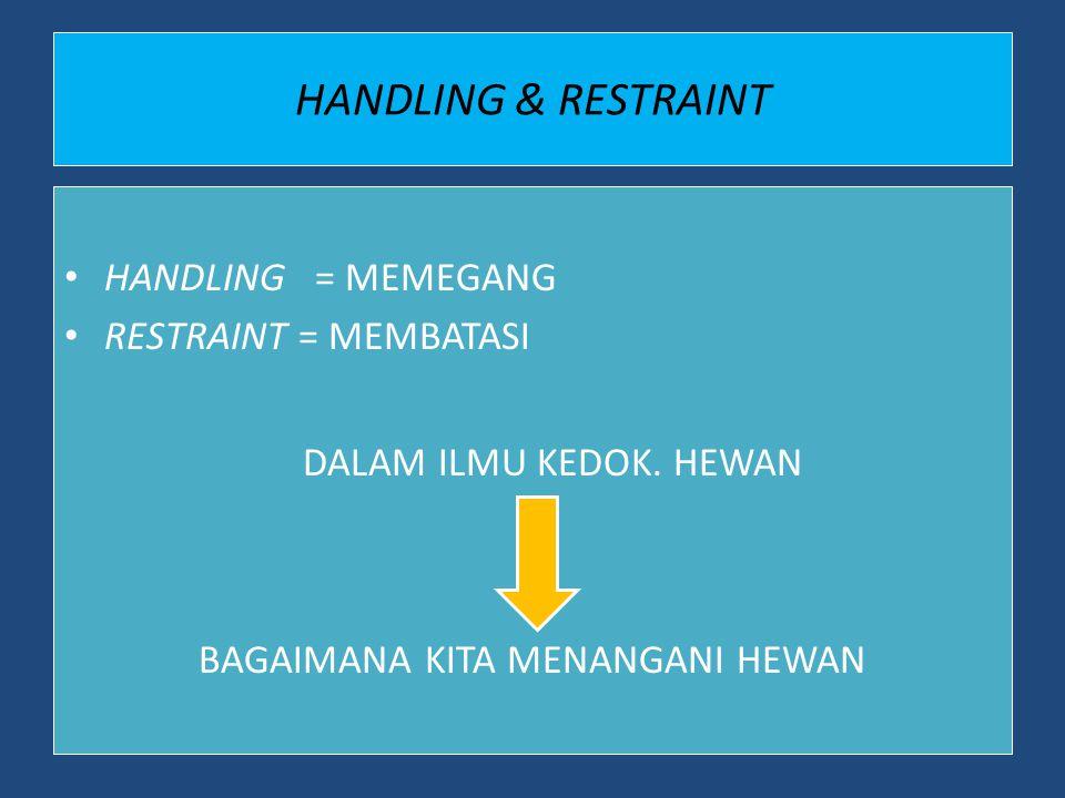 HANDLING & RESTRAINT HANDLING = MEMEGANG RESTRAINT = MEMBATASI DALAM ILMU KEDOK. HEWAN BAGAIMANA KITA MENANGANI HEWAN