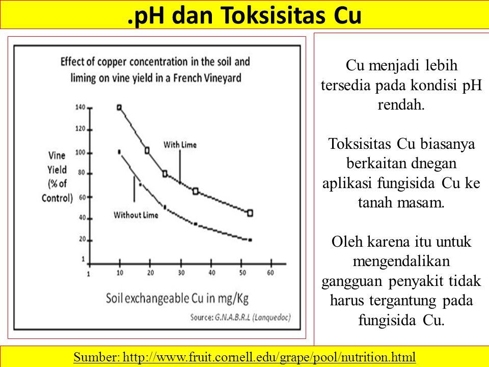 .pH dan Toksisitas Cu Cu menjadi lebih tersedia pada kondisi pH rendah.