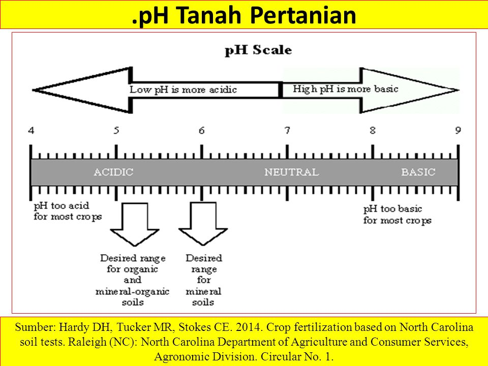 .pH Tanah Pertanian Sumber: Hardy DH, Tucker MR, Stokes CE. 2014. Crop fertilization based on North Carolina soil tests. Raleigh (NC): North Carolina