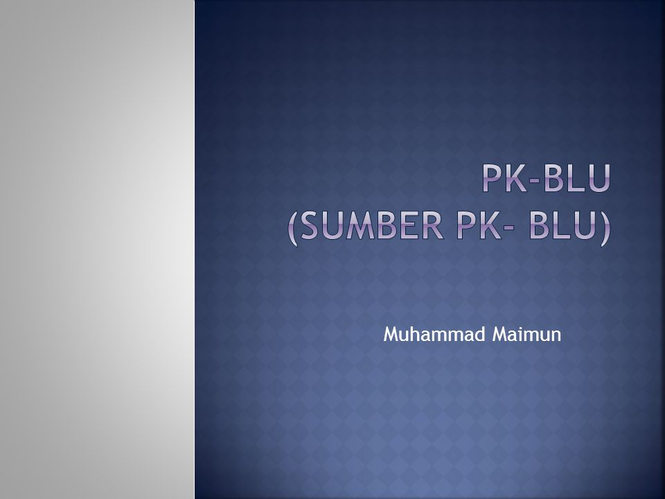 Muhammad Maimun