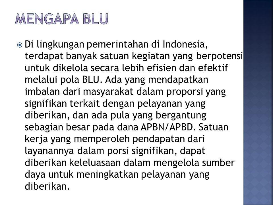  Di lingkungan pemerintahan di Indonesia, terdapat banyak satuan kegiatan yang berpotensi untuk dikelola secara lebih efisien dan efektif melalui pol