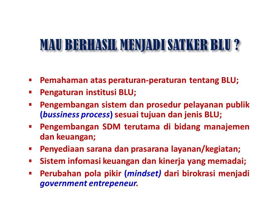  Pemahaman atas peraturan-peraturan tentang BLU;  Pengaturan institusi BLU;  Pengembangan sistem dan prosedur pelayanan publik (bussiness process)