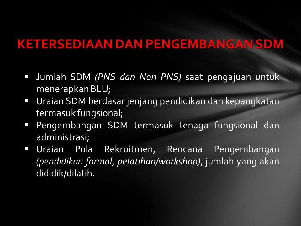  Jumlah SDM (PNS dan Non PNS) saat pengajuan untuk menerapkan BLU;  Uraian SDM berdasar jenjang pendidikan dan kepangkatan termasuk fungsional;  Pe