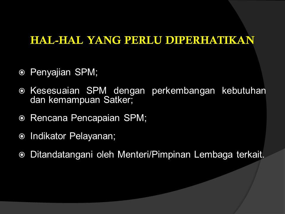  Penyajian SPM;  Kesesuaian SPM dengan perkembangan kebutuhan dan kemampuan Satker;  Rencana Pencapaian SPM;  Indikator Pelayanan;  Ditandatangan