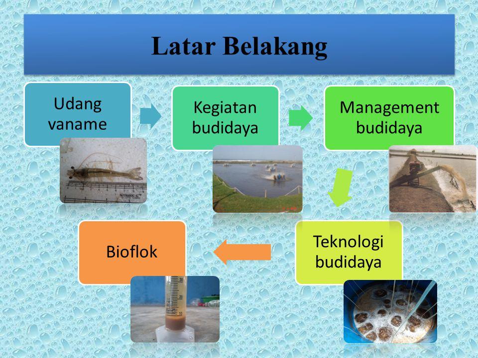 Tingkat Kelangsungan Hidup Kelangsungan Hidup KanibalismePakanBuatanBioflok/alamiKualitas Air Kristal garam kalsium karbonat hidrat Bakteriosin terhadap bakteri patogen Enzim Ekstraseluler