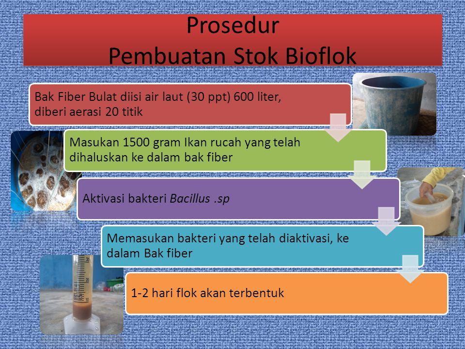 Prosedur Pembuatan Stok Bioflok Bak Fiber Bulat diisi air laut (30 ppt) 600 liter, diberi aerasi 20 titik Masukan 1500 gram Ikan rucah yang telah diha