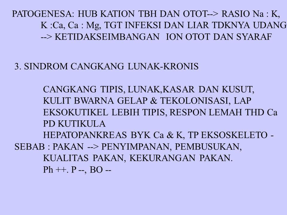 PATOGENESA: HUB KATION TBH DAN OTOT--> RASIO Na : K, K :Ca, Ca : Mg, TGT INFEKSI DAN LIAR TDKNYA UDANG --> KETIDAKSEIMBANGAN ION OTOT DAN SYARAF 3. SI