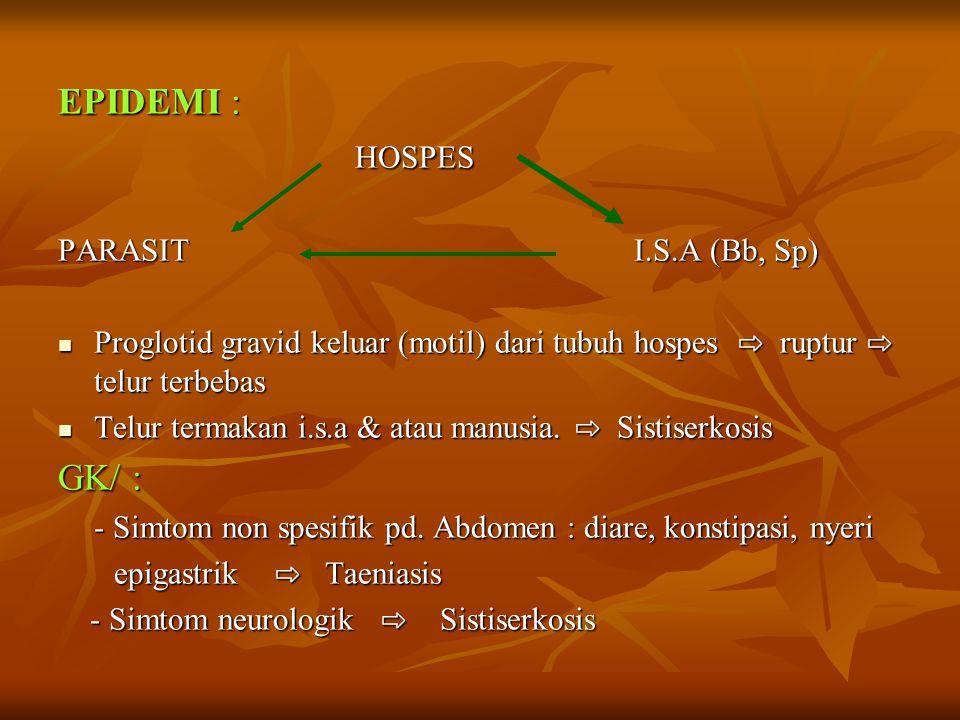 EPIDEMI : HOSPES HOSPES PARASITI.S.A (Bb, Sp) Proglotid gravid keluar (motil) dari tubuh hospes ⇨ ruptur ⇨ telur terbebas Proglotid gravid keluar (motil) dari tubuh hospes ⇨ ruptur ⇨ telur terbebas Telur termakan i.s.a & atau manusia.