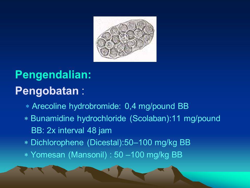 TAENIASIS PADA UNGGAS PENYEBAB : ~ Davainea Proglotina ~ Raillietina tetragona ~ Raillietina tetragona ~ Raillietina echinobothrida ~ Raillietina cesticillus ~ Amoebotaenia sphenoides ~ Choanotaenia infundubulum