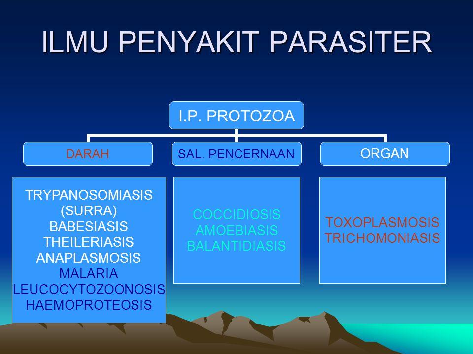 ILMU PENYAKIT PARASITER I.P. PROTOZOA DARAH SAL. PENCERNAAN ORGAN TRYPANOSOMIASIS (SURRA) BABESIASIS THEILERIASIS ANAPLASMOSIS MALARIA LEUCOCYTOZOONOS
