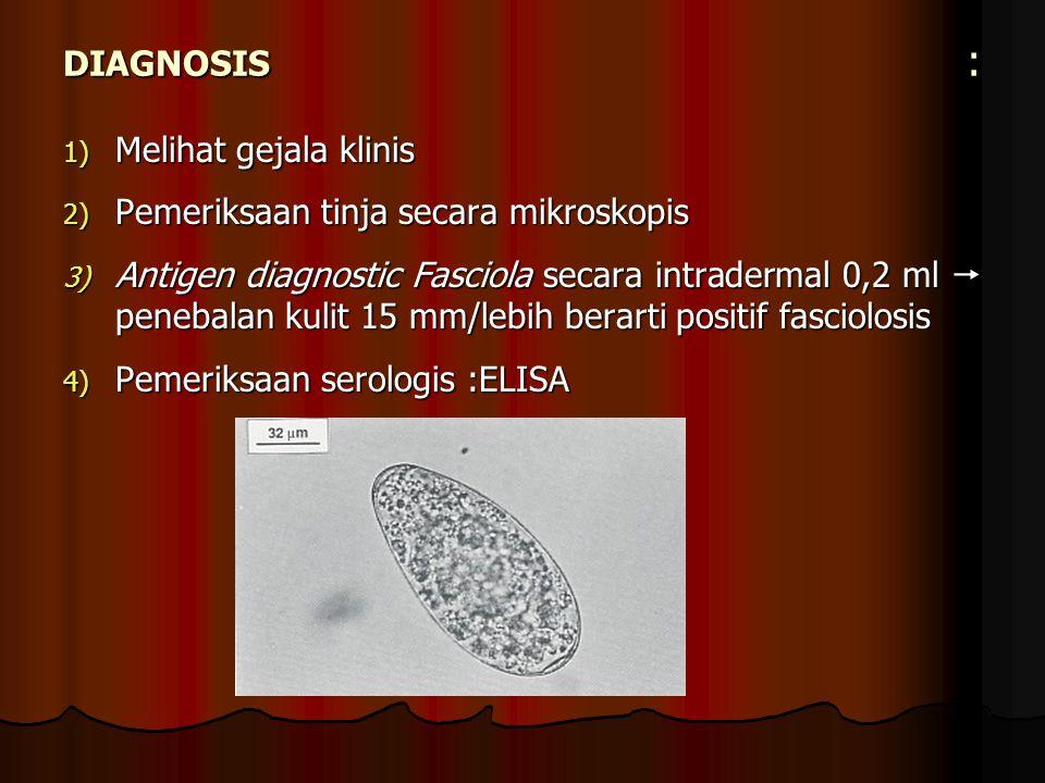 DIAGNOSIS : 1) Melihat gejala klinis 2) Pemeriksaan tinja secara mikroskopis 3) Antigen diagnostic Fasciola secara intradermal 0,2 ml  penebalan kuli