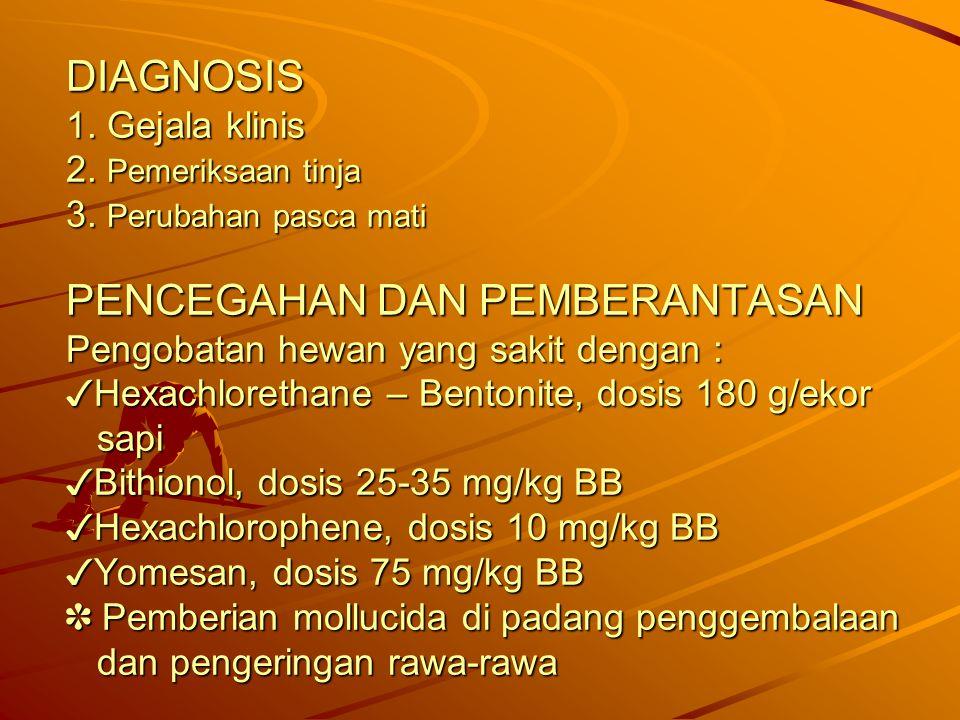 DIAGNOSIS 1. Gejala klinis 2. Pemeriksaan tinja 3. Perubahan pasca mati PENCEGAHAN DAN PEMBERANTASAN Pengobatan hewan yang sakit dengan : ✓ Hexachlore