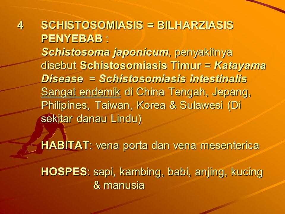 4SCHISTOSOMIASIS = BILHARZIASIS PENYEBAB : Schistosoma japonicum, penyakitnya disebut Schistosomiasis Timur = Katayama Disease = Schistosomiasis intes
