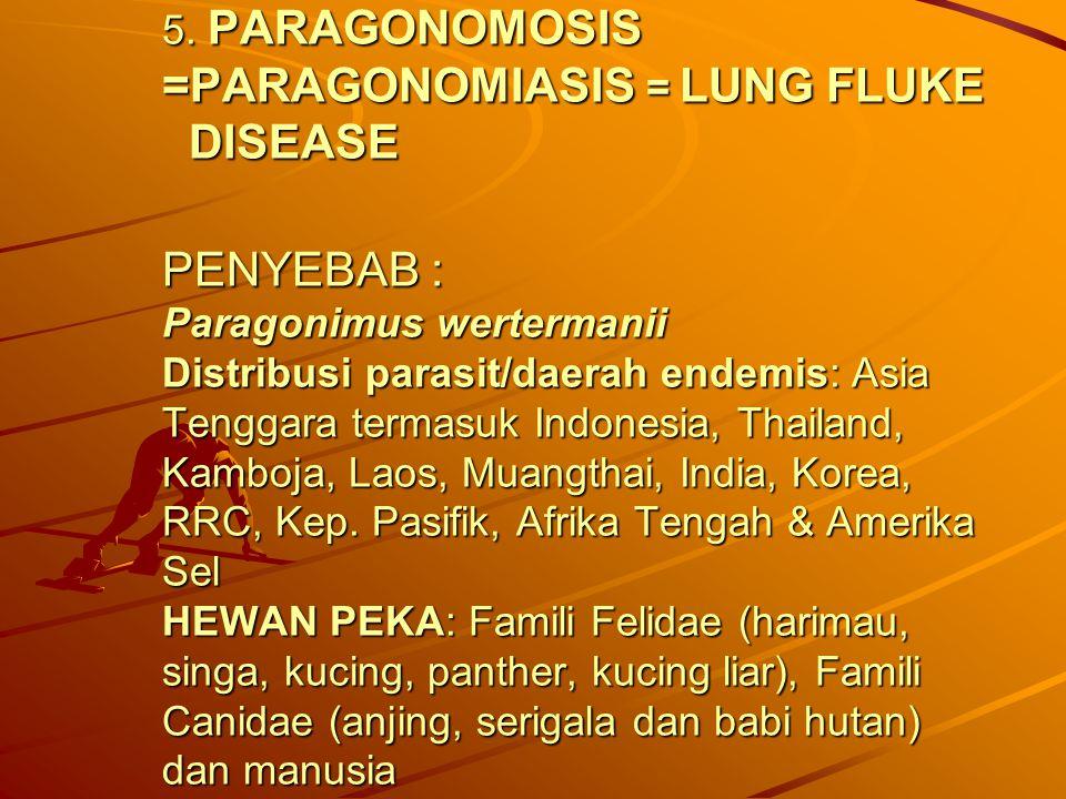 5. PARAGONOMOSIS =PARAGONOMIASIS = LUNG FLUKE DISEASE PENYEBAB : Paragonimus wertermanii Distribusi parasit/daerah endemis: Asia Tenggara termasuk Ind