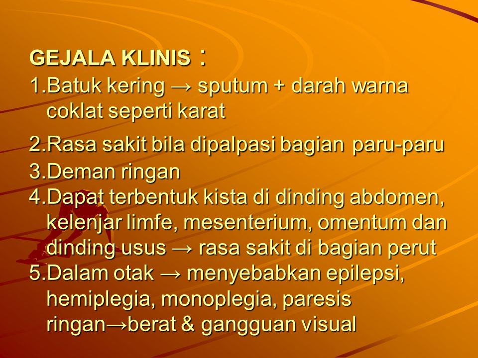 GEJALA KLINIS : 1.Batuk kering → sputum + darah warna coklat seperti karat 2.Rasa sakit bila dipalpasi bagian paru-paru 3.Deman ringan 4.Dapat terbent