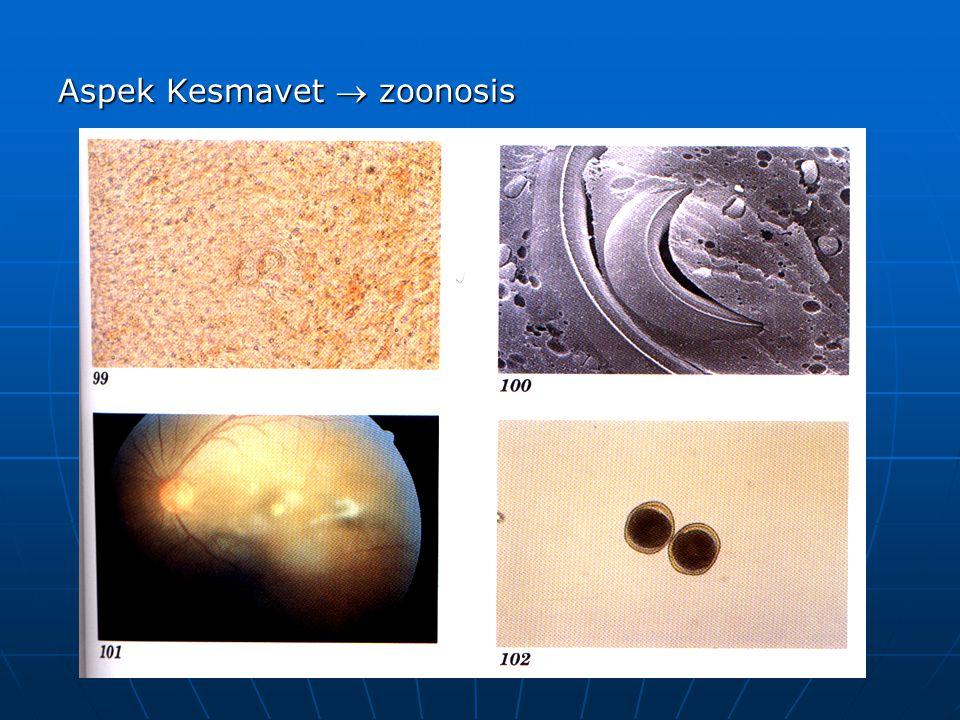 Aspek Kesmavet  zoonosis
