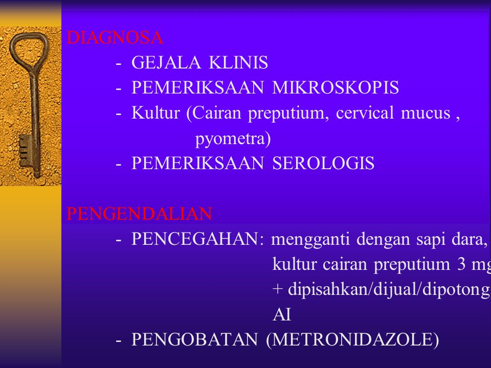 DIAGNOSA - GEJALA KLINIS - PEMERIKSAAN MIKROSKOPIS - Kultur (Cairan preputium, cervical mucus, pyometra) - PEMERIKSAAN SEROLOGIS PENGENDALIAN - PENCEG