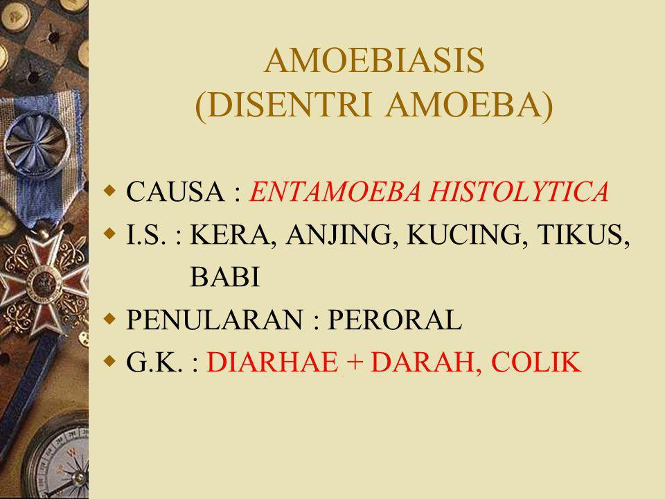 AMOEBIASIS (DISENTRI AMOEBA)  CAUSA : ENTAMOEBA HISTOLYTICA  I.S.