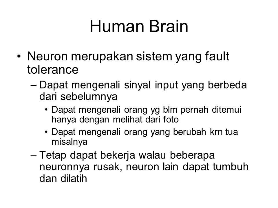 Human Brain Neuron merupakan sistem yang fault tolerance –Dapat mengenali sinyal input yang berbeda dari sebelumnya Dapat mengenali orang yg blm perna