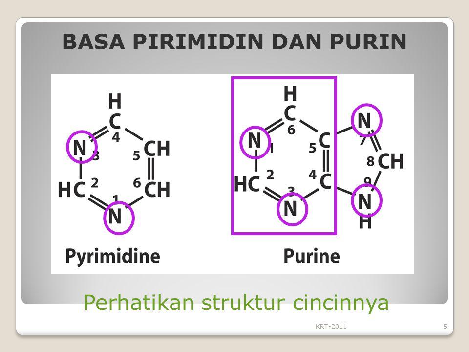 KRT-20115 BASA PIRIMIDIN DAN PURIN Perhatikan struktur cincinnya