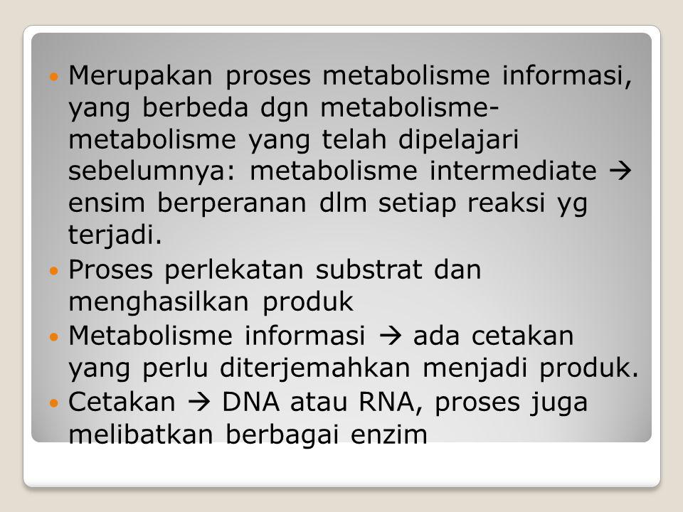 Merupakan proses metabolisme informasi, yang berbeda dgn metabolisme- metabolisme yang telah dipelajari sebelumnya: metabolisme intermediate  ensim b