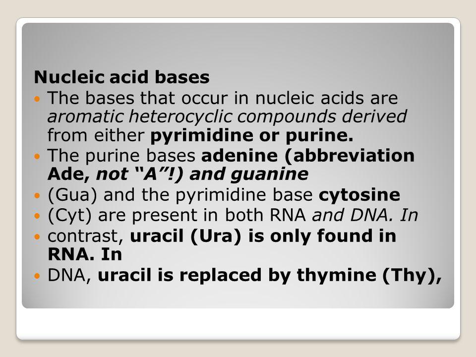 DNA polimerase Pada sel bakteri dikenal ada 3 macam DNA polimerase DNA polimerase I, II dan III DNA polimerase I  mempunyai aktivitas eksonuklease  proof reading