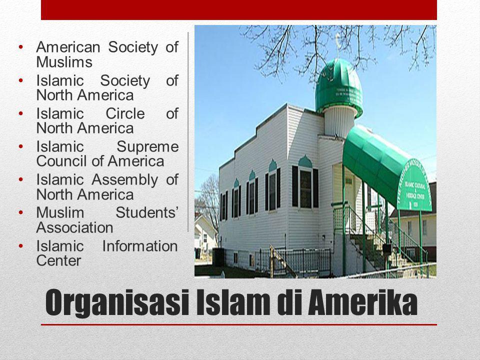 Muslim dan Politik Amerika Interest group untuk mengakomodasi kepentingan Muslim AS: Council on American-Islamic Relations, organisasi moderat di arena politik AS.