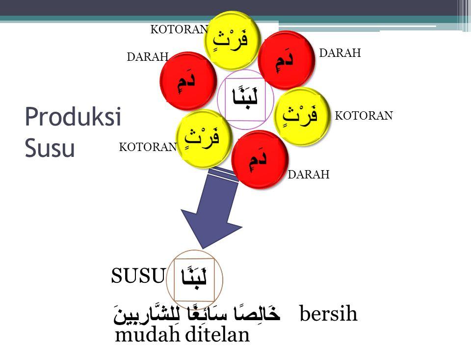 خَالِصًا سَائِغًا لِلشَّارِبِينَ Produksi Susu DARAH KOTORAN SUSU bersih mudah ditelan