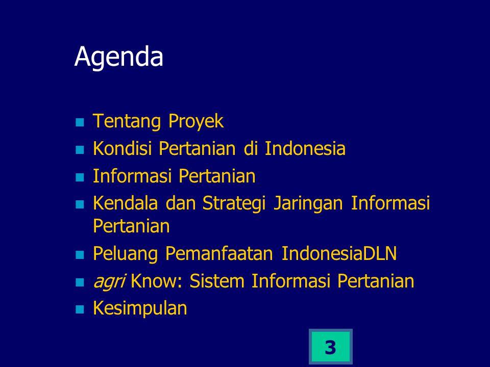 3 Agenda Tentang Proyek Kondisi Pertanian di Indonesia Informasi Pertanian Kendala dan Strategi Jaringan Informasi Pertanian Peluang Pemanfaatan Indon