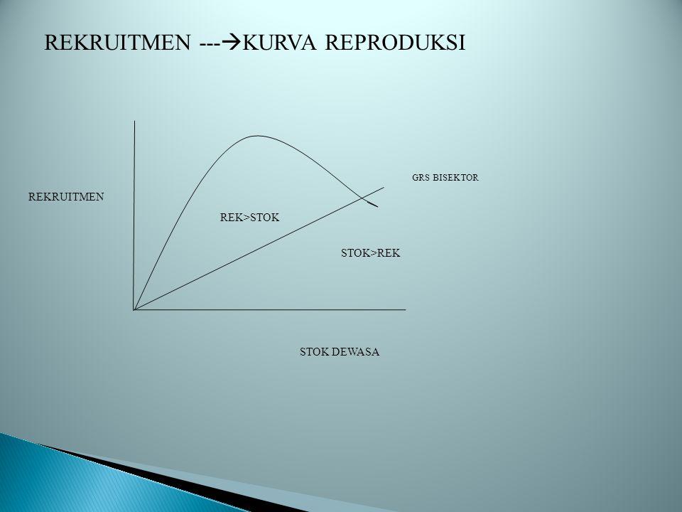 REKRUITMEN ---  KURVA REPRODUKSI REKRUITMEN STOK DEWASA GRS BISEKTOR REK>STOK STOK>REK