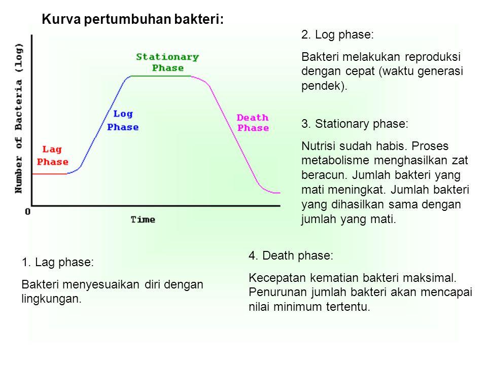 Kurva pertumbuhan bakteri: 1. Lag phase: Bakteri menyesuaikan diri dengan lingkungan. 2. Log phase: Bakteri melakukan reproduksi dengan cepat (waktu g