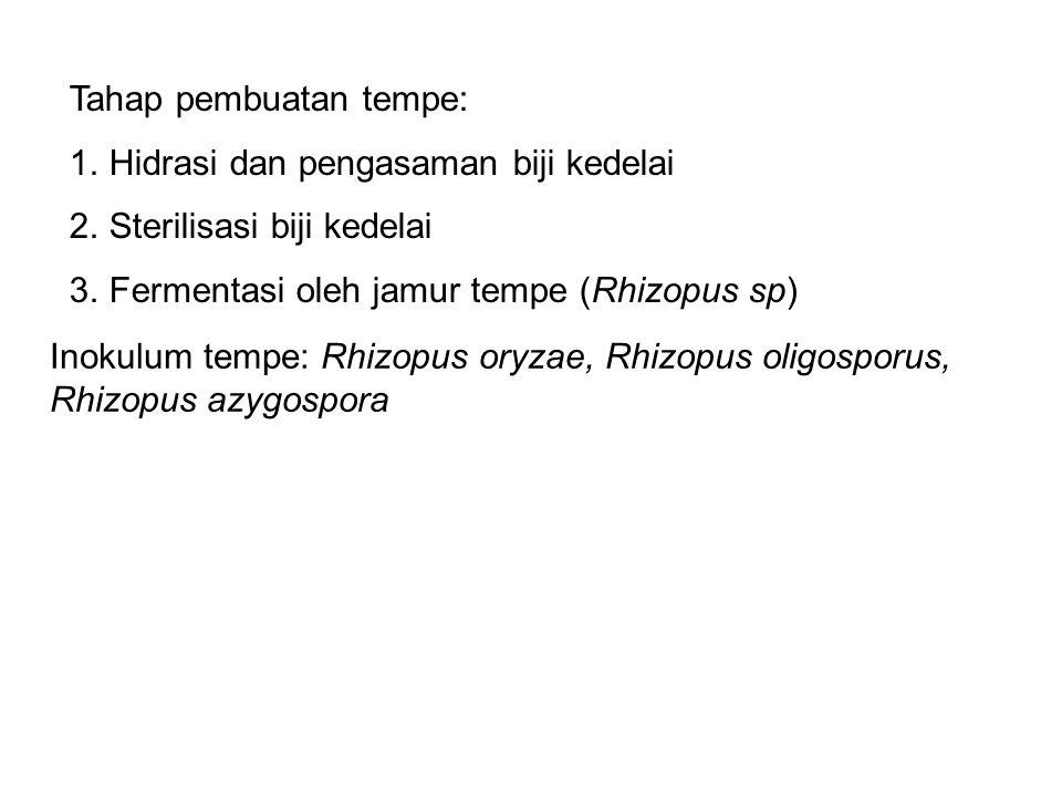Tahap pembuatan tempe: 1.Hidrasi dan pengasaman biji kedelai 2.Sterilisasi biji kedelai 3.Fermentasi oleh jamur tempe (Rhizopus sp) Inokulum tempe: Rhizopus oryzae, Rhizopus oligosporus, Rhizopus azygospora