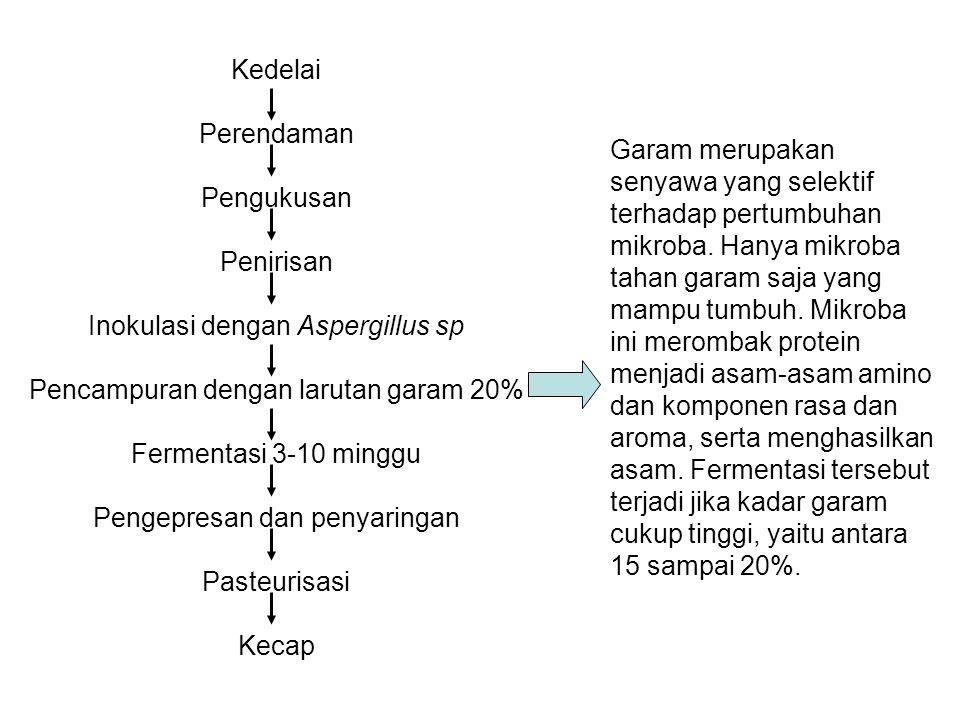 Kedelai Perendaman Pengukusan Penirisan Inokulasi dengan Aspergillus sp Pencampuran dengan larutan garam 20% Fermentasi 3-10 minggu Pengepresan dan penyaringan Pasteurisasi Kecap Garam merupakan senyawa yang selektif terhadap pertumbuhan mikroba.