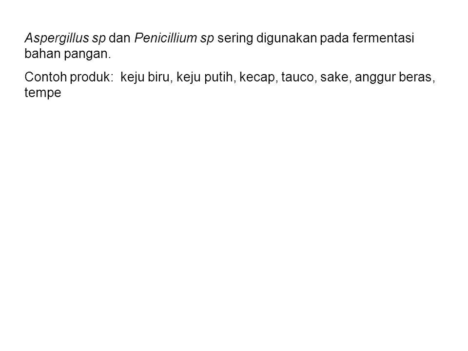 Aspergillus sp dan Penicillium sp sering digunakan pada fermentasi bahan pangan. Contoh produk: keju biru, keju putih, kecap, tauco, sake, anggur bera