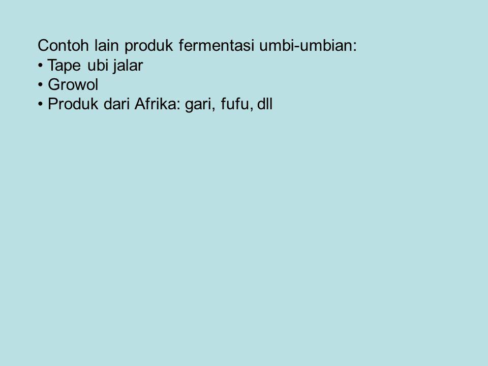 Contoh lain produk fermentasi umbi-umbian: Tape ubi jalar Growol Produk dari Afrika: gari, fufu, dll