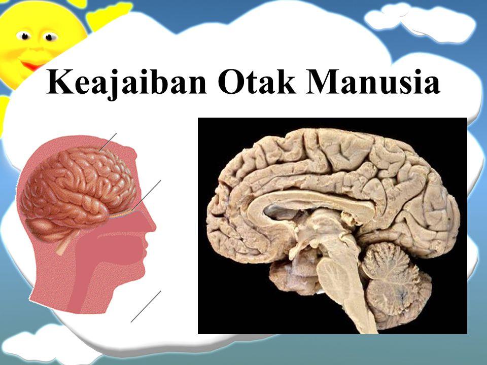 Keajaiban Otak Manusia