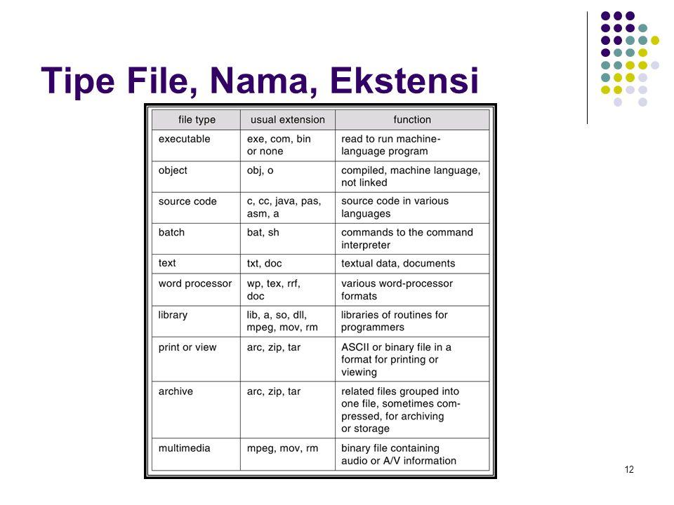 12 Tipe File, Nama, Ekstensi