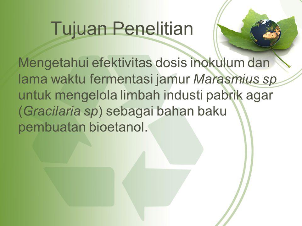 Produksi bioetanol  Hidrolisis 1.Persiapan bahan baku limbah pengolahan agar 2.Persiapan kultur Marasmius sp 3.Tepung limbah pengolahan agar sebanyak 41,75 g dimasukan ke dalam erlenmeyer 4.Aquades dimasukan sebanyak 150 ml yang telah dipanaskan sampai suhu 50oC 5.Dosis inokulum Marasmius sp pada kulutr besar dimasukan sebanyak 5 %, 7,5 % dan 10 % dari jumlah substrat.