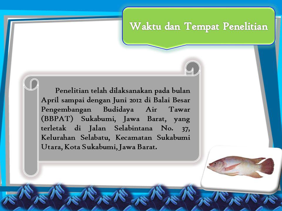 Penelitian telah dilaksanakan pada bulan April sampai dengan Juni 2012 di Balai Besar Pengembangan Budidaya Air Tawar (BBPAT) Sukabumi, Jawa Barat, yang terletak di Jalan Selabintana No.