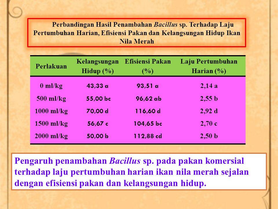 Perlakuan Kelangsungan Hidup (%) Efisiensi Pakan (%) Laju Pertumbuhan Harian (%) 0 ml/kg 500 ml/kg 1000 ml/kg 1500 ml/kg 2000 ml/kg 43,33 a 55,00 bc 70,00 d 56,67 c 50,00 b 93,51 a 96,62 ab 116,60 d 104,65 bc 112,88 cd 2,14 a 2,55 b 2,92 d 2,70 c 2,50 b Perbandingan Hasil Penambahan Bacillus sp.
