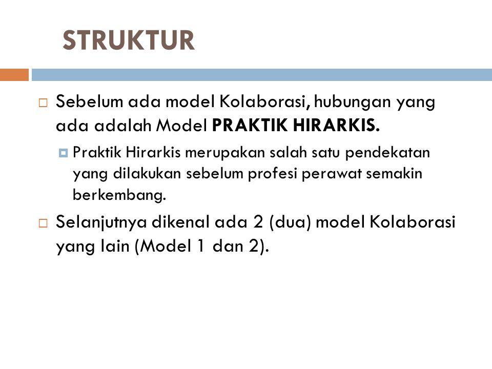 STRUKTUR  Sebelum ada model Kolaborasi, hubungan yang ada adalah Model PRAKTIK HIRARKIS.  Praktik Hirarkis merupakan salah satu pendekatan yang dila