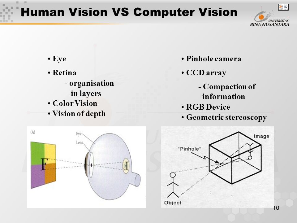 10 Eye Retina - organisation in layers Color Vision Vision of depth Human Vision VS Computer Vision Pinhole camera CCD array - Compaction of informati