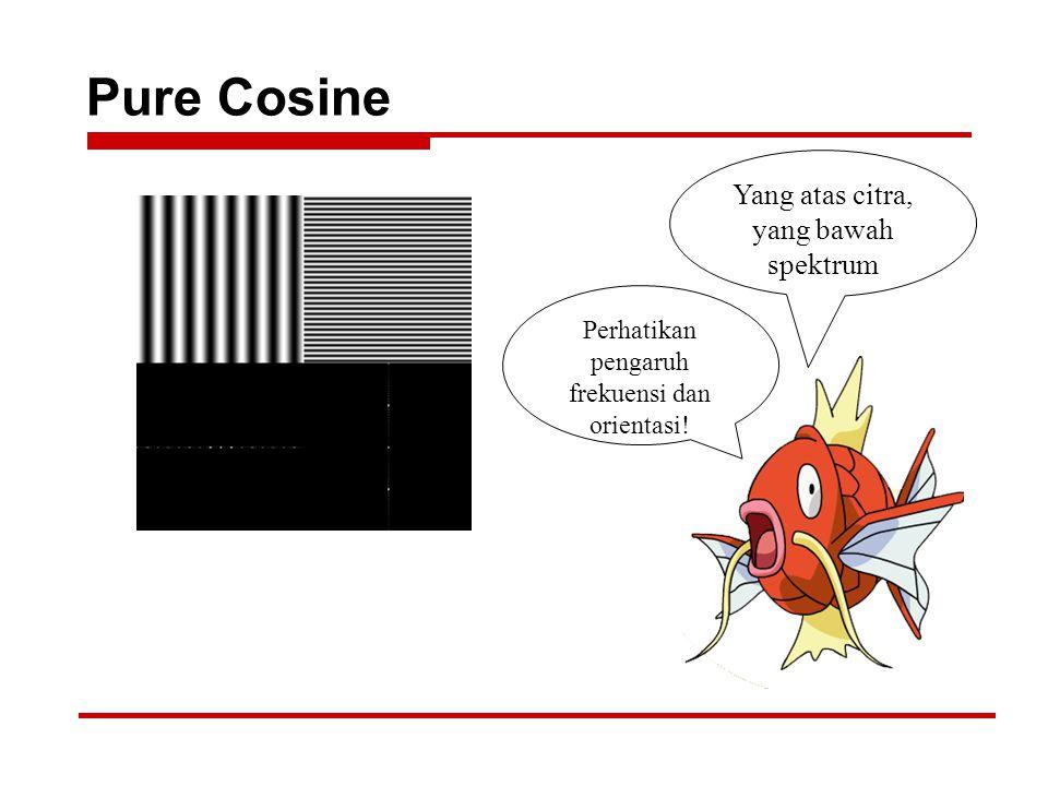 Pure Cosine Yang atas citra, yang bawah spektrum Perhatikan pengaruh frekuensi dan orientasi!