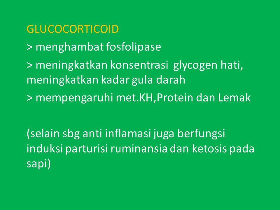 GLUCOCORTICOID > menghambat fosfolipase > meningkatkan konsentrasi glycogen hati, meningkatkan kadar gula darah > mempengaruhi met.KH,Protein dan Lemak (selain sbg anti inflamasi juga berfungsi induksi parturisi ruminansia dan ketosis pada sapi)