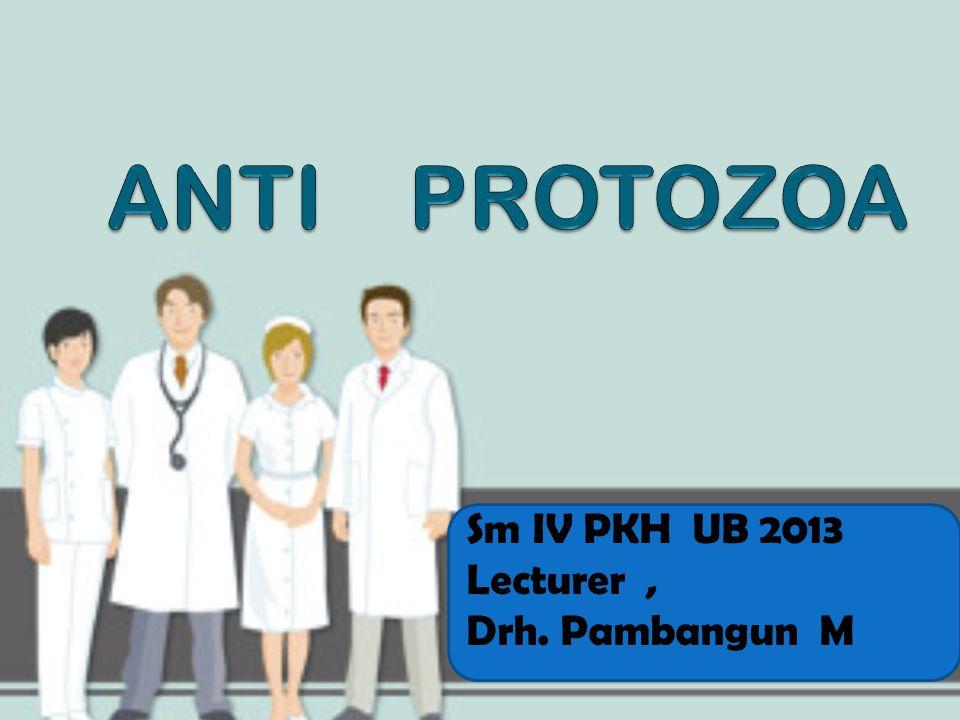 Sm IV PKH UB 2013 Lecturer, Drh. Pambangun M