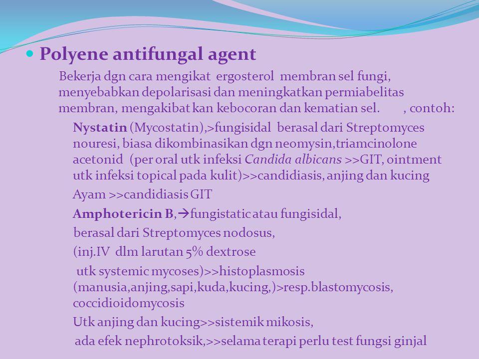 Polyene antifungal agent Bekerja dgn cara mengikat ergosterol membran sel fungi, menyebabkan depolarisasi dan meningkatkan permiabelitas membran, meng
