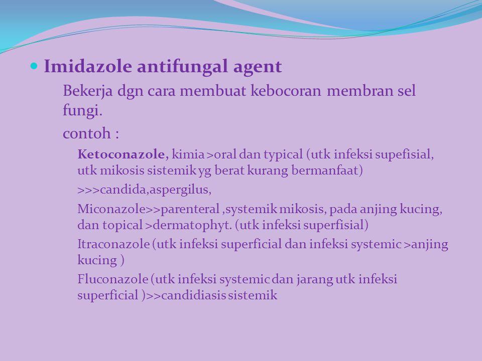 Imidazole antifungal agent Bekerja dgn cara membuat kebocoran membran sel fungi. contoh : Ketoconazole, kimia >oral dan typical (utk infeksi supefisia